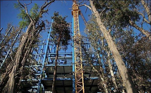 حذف مصوبه برج باغ از طرح جامع تا دوماه آینده