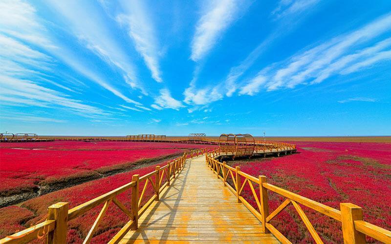 ساحل عجیبی که به معنای واقعی قرمز است!