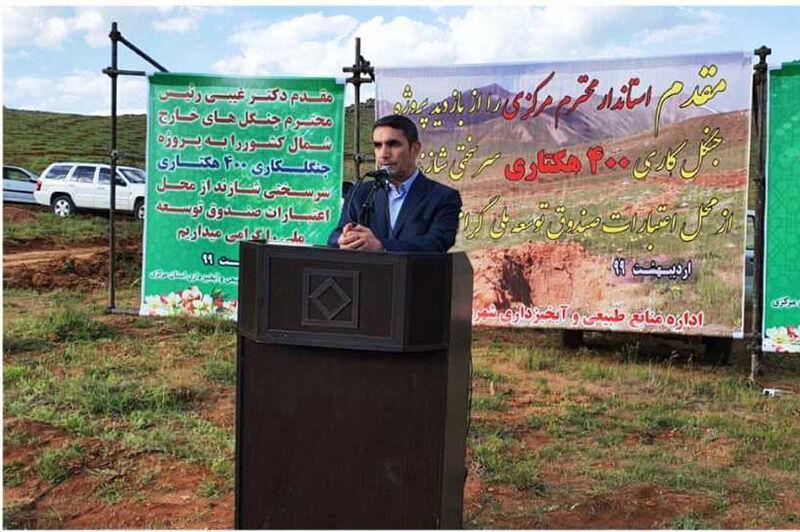 خبرنگاران 2 هزار هکتار جنگل کاری در استان مرکزی آغاز شده است