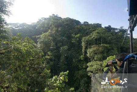 دوچرخه سواری بر فراز جنگل های انبوه اکوادور