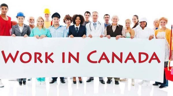 تور کانادا: 10 کارگزار برتر کانادا برای استخدام در سال 2020