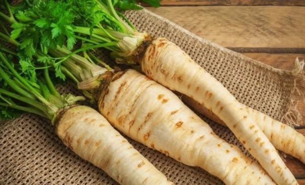 گیاهی که می تواند دیابت را کنترل کند